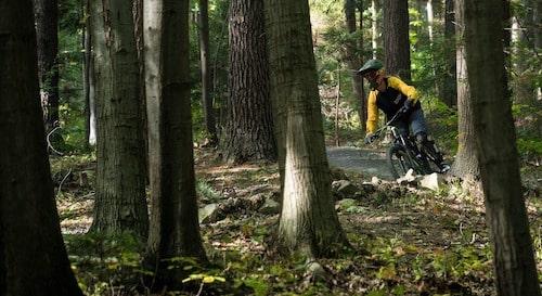 mountainbiker in een bos